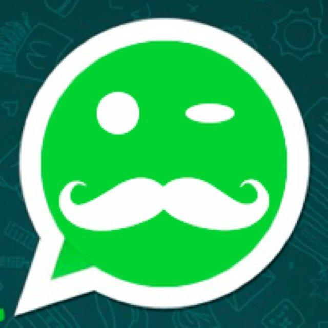 La Storia Di Whatsapp Whatsapp S Story Carolinsigna